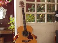 楽器を習いたい、おすすめの楽器、簡単に弾ける楽器【ギターとベース編】