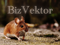 【BizVektor】サイドバーの横幅をアドセンスの336pxに変更する方法!