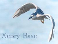 【Xeory Base】投稿時に最初に入れた画像をアイキャッチに自動設定!プラグインなしでカスタマイズする方法!