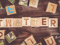 【Simplicity2】Twitterの設定とTwitter Cardの設定方法!